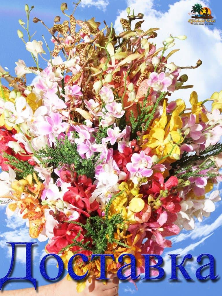 Таиланд цветы купить купить цветы с доставкой в астрахани